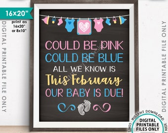 "Pregnancy Announcement, Could be Pink Could be Blue Baby is Due in FEBRUARY Dated Chalkboard Style PRINTABLE 16x20"" Reveal Sign <ID>"
