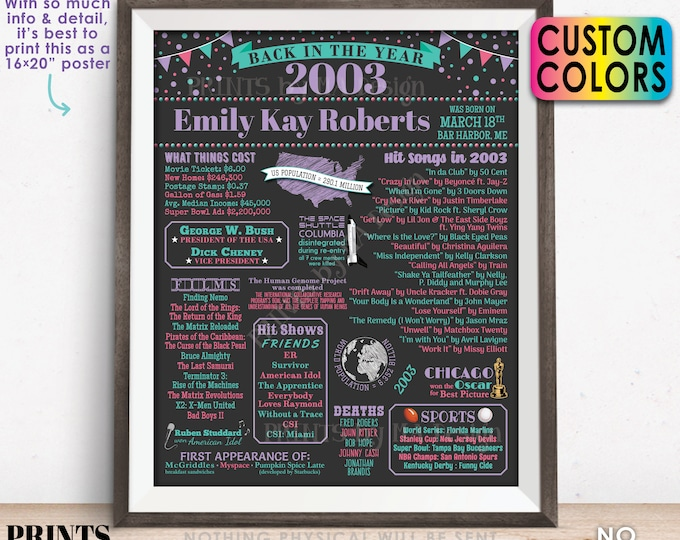 """Back in the Year 2003 Birthday Sign, Flashback to 2003 Poster Board, 2003 Birthday Gift, Custom PRINTABLE 16x20"""" B-day Decoration"""