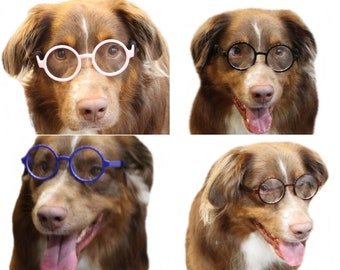 f9ae85677b3 G003 Dog Clear Lens Round Retro Glasses goggle sunglasses for All Medium to  Large Dogs 20lbs   Over Daily wear Costume Photo shoot