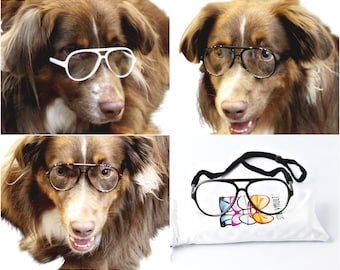 806fc1563ad G008 Dog Clear lens Aviator turbo Glasses retro hipster sunglasses Medium  to Large Dogs 20lbs   Over