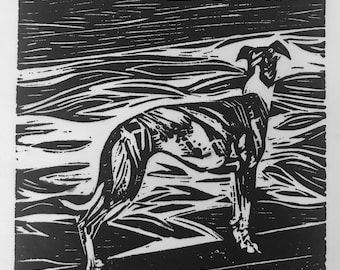 Whippet and River