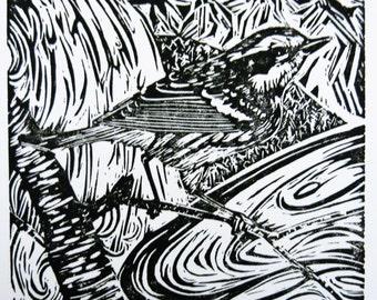 Townsend's Warbler bird art block print