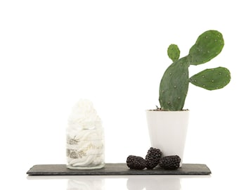 Cactus and Blackberry, Whipped Body Butter