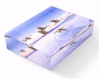 Sandhill Crane Birds Flying, Glass Paperweights, Cottage Decor, Bird Lovers, Gift Ideas, Home Office Decor, Bird Photography, Original Art
