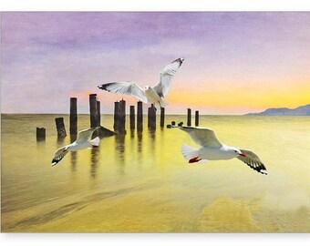 Seagulls Flying, Photo Greeting Card, Handmade Card, All Occasion Card, Seagulls Flying, 5x7 Blank Card, Fine Art Print, Photo Note Cards