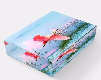 Roseate Spoonbill Bird, Glass Paperweights, Oval or Square, Bird Lovers, Gift Ideas, Home Office Decor, Bird Photography, Original Artwork