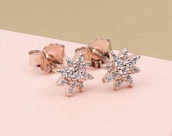 Rose Gold Celestial Star Earrings (HBE35)
