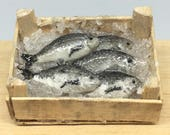 Box of fresh fish 1:12 scale in polymer clay