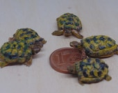 Little turtles miniatures 1:12 scale in polymer clay