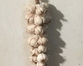 Braid of garlic 1:12 scal...