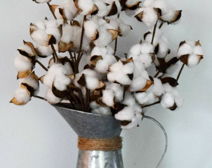Cotton Stems in Galvanized Metal Pitcher Farmhouse Floral Arrangement - Second Anniversary Gift Idea - Rustic Decor
