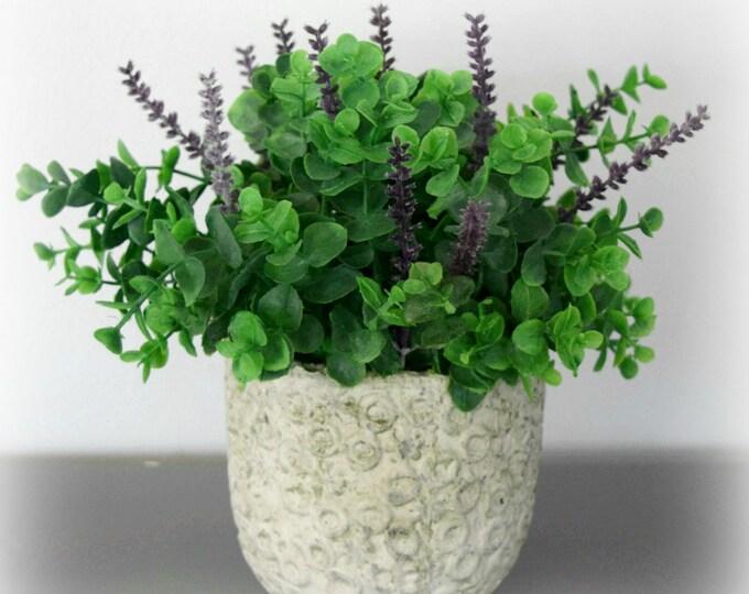 Eucalyptus and Lavender Arrangement in Cement Planter Pot