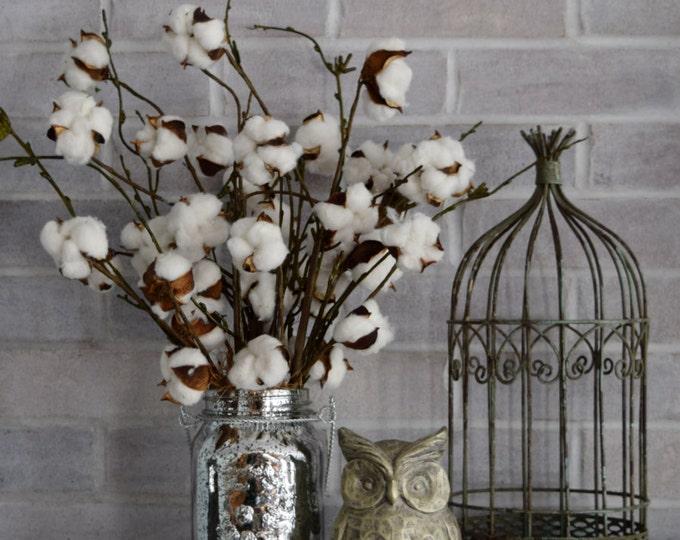 Mercury Glass Cotton Arrangement