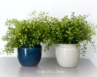 Mini Artificial Greenery Arrangement for Home or Office