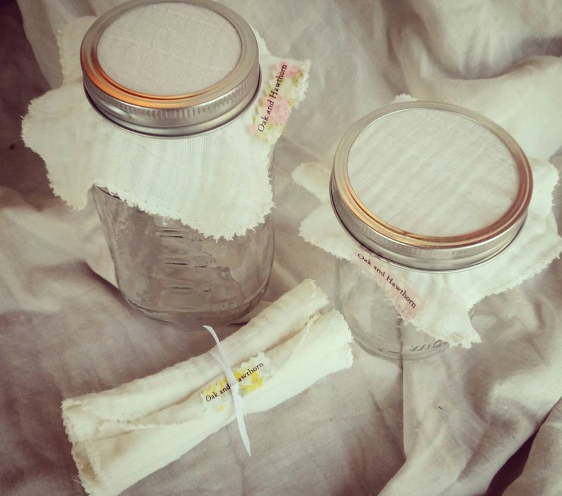 Bundle of four Jar Top Cloths for kombucha sprouts vinegars image 0
