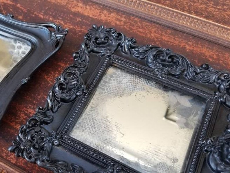 Antiqued mirror in black Victorian frame with snakeskin shed image 0