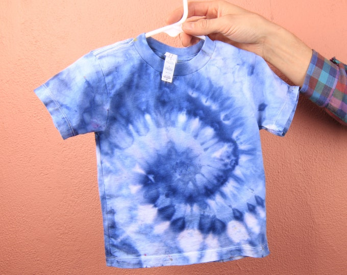 Hand Dyed TODDLER TEES