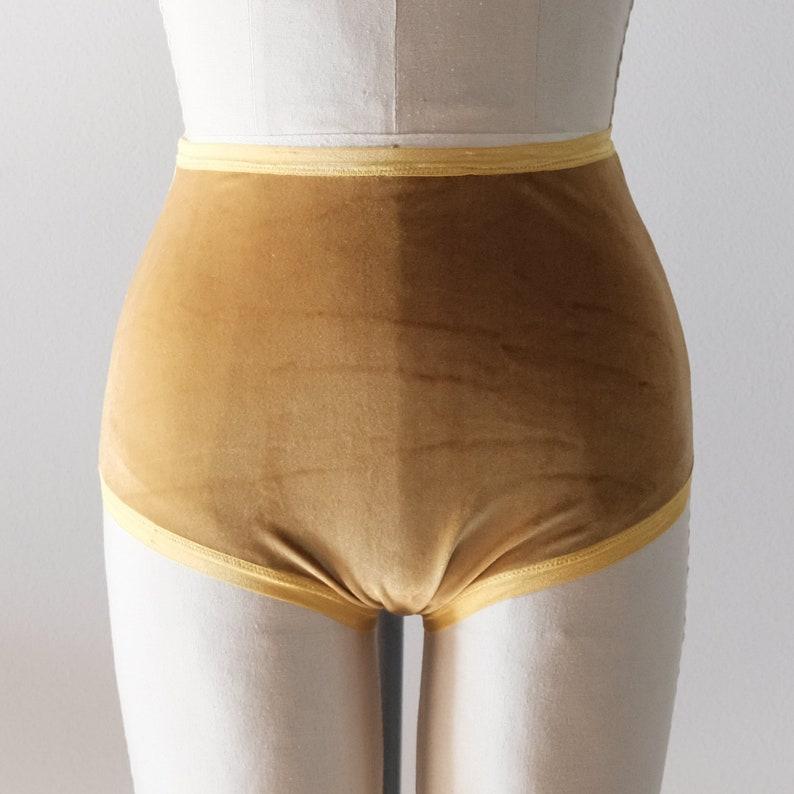 Velvet Panties High Rise Underwear 1950s undies Retro  9dd2ddcd1