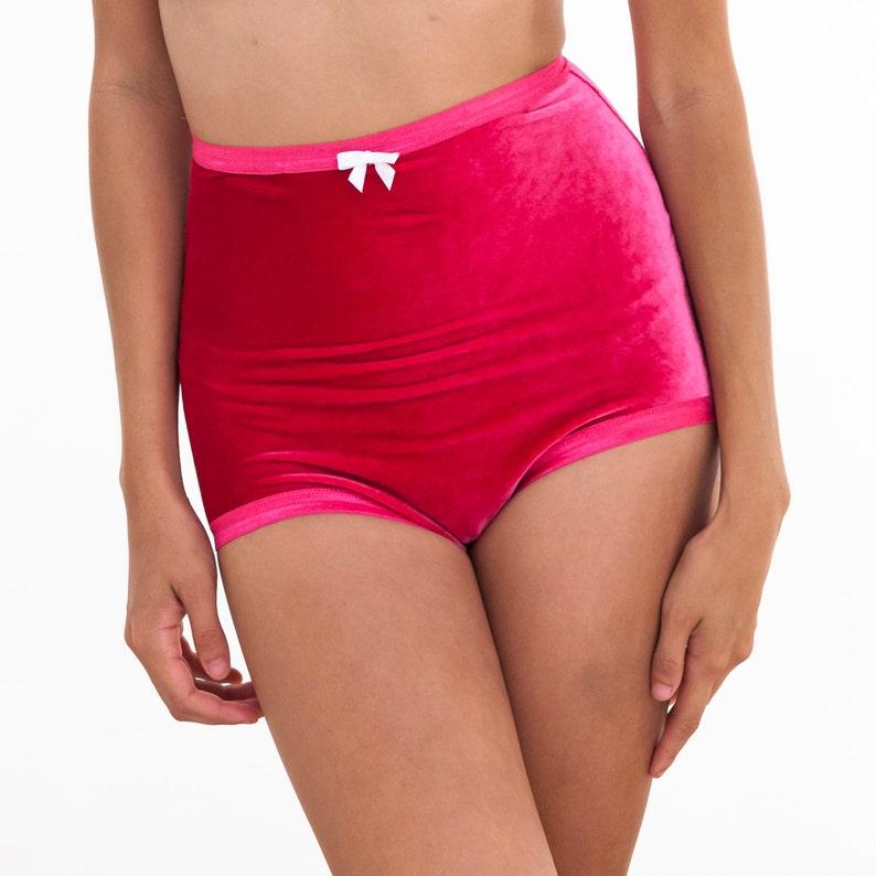 Pink Velvet Undies high waist panties retro underwear sexy  59a1127d0