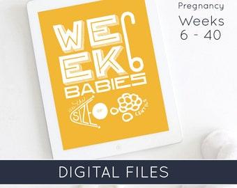 Twin Pregnancy Week by Week with Baby's Projected Size   Twin Pregnancy   Pregnancy Countdown Photo Prop   Pregnancy Milestone   Pregnant