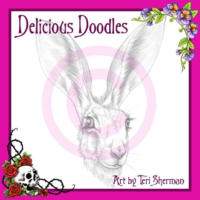 Greyscale Jack Rabbit Hare Sketch Illustration Digital image 0