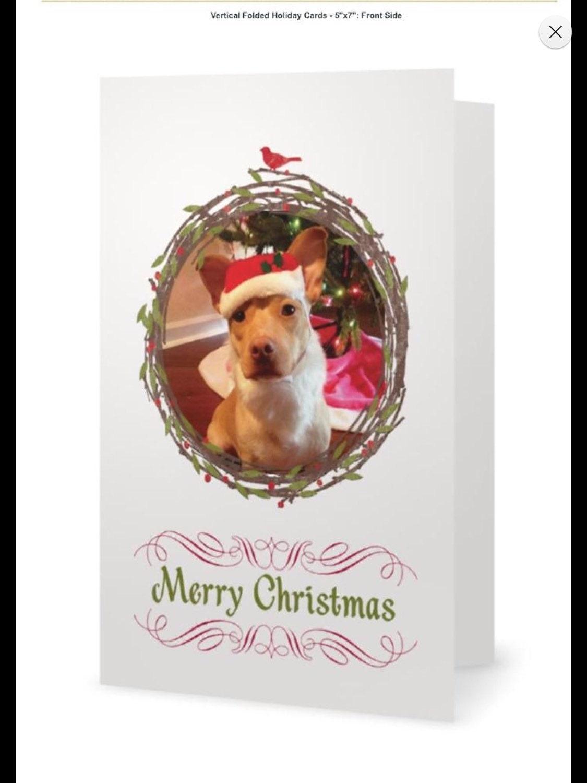 10 Holiday Dog Cards Mini Pitbull Holly Jolly Christmas | Etsy