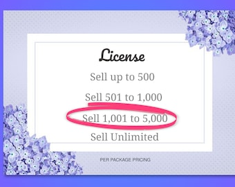 License, Sell 1,001 to 5,000 items, PDF digital delivery, custom