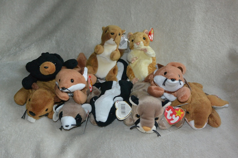 1ff129d4f39 Ty Woodland Beanie Baby Collection