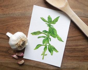 Original Herb Watercolor Painting- Basil, Kitchen Decor