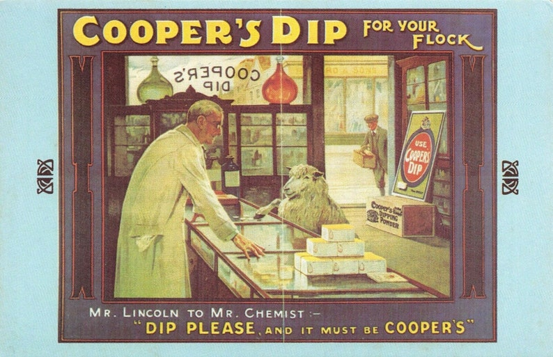 Nostalgia Postcard 1900s COOPERS DIP for your Flock Advertising Repro Card #N175