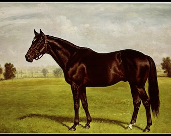 Bold Ruler Painted By Richard Stone Reeves Race Horses Thoroughbreds Horse Racing Famous Horses15 Inches Wide And 12 Tall