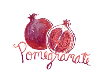 8X8 elegant Pomegranate food art print with hand drawn typography