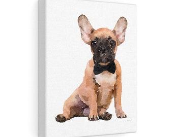 d7553b670d311 Fawn french bulldog