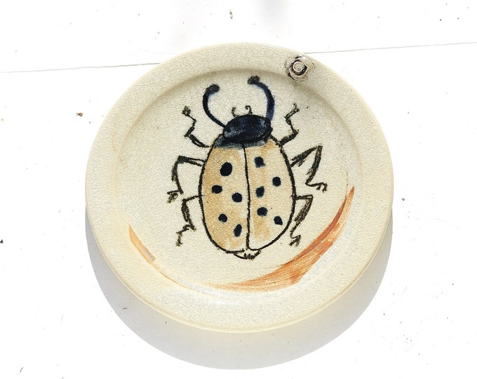 Ladybug Plate, Ladybird Plate, Bug Plate, Enameled Ceramic Plate, Ladybug Ceramic, Ladybird Ceramic