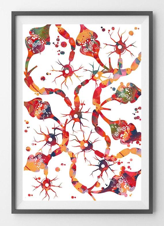 Neuronen En Synapse Aquarel Print Hersenen Verbindingen Poster Neuraal Netwerk Wetenschap Print Zenuwcellen En Neurotransmitter Neuroscience Kunst