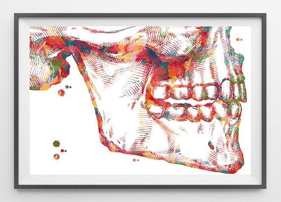 Mandible And Maxilla Anatomy Watercolor Print Corrective Jaw Etsy