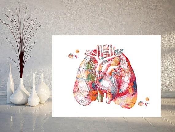 Lunge und Herz Anatomie Kunstdruck das Herz In der Mitte der   Etsy