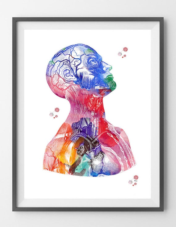 Head And Torso Watercolor Print Anatomy Art Poster Human Head Etsy