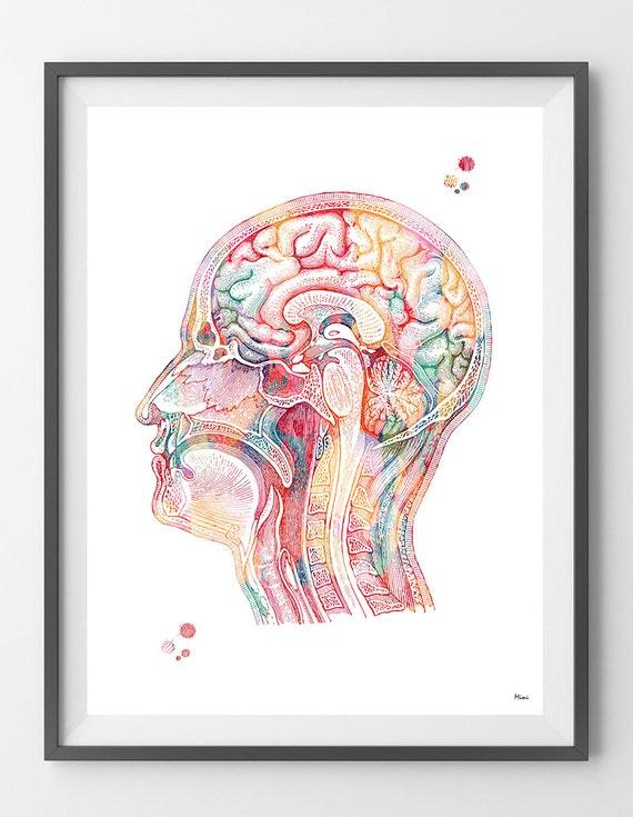Menschlichen Kopf Aquarell Druckkopf Anatomie Poster Gehirn | Etsy