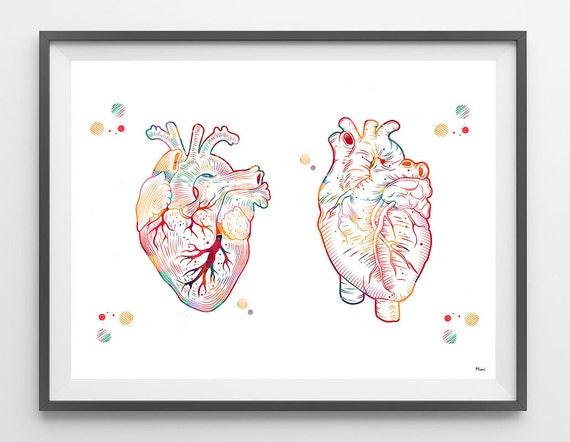 Menschlichen Herzen Aquarell Druck medizinische Kunst Herz | Etsy