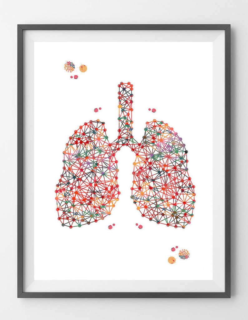 Lungs Anatomy Print Respiratory System Abstract Lungs Etsy