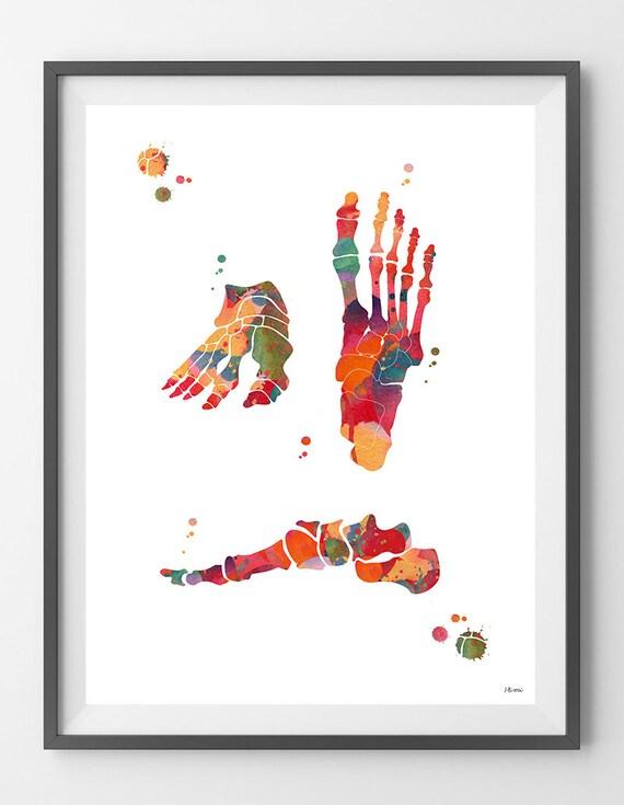 Fuß Knochen Aquarell Druck Fuß Anatomie orthopädische | Etsy