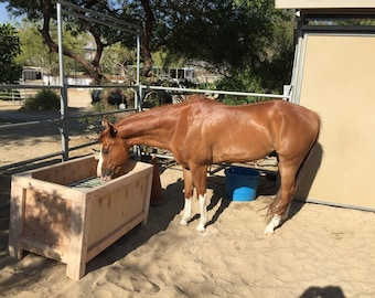 INSTRUCTIONS ONLY / Slow Feeder / Slow Grazer / Horse Hay Feeder INSTRUCTIONS only