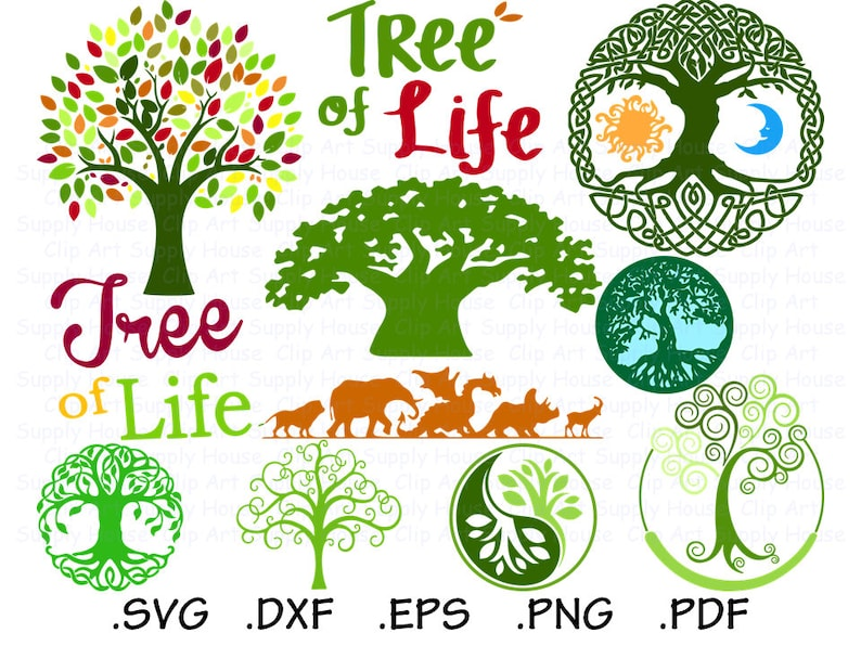 Tree Svg Collection Cricut Design Files Tree Of Life Svg Etsy