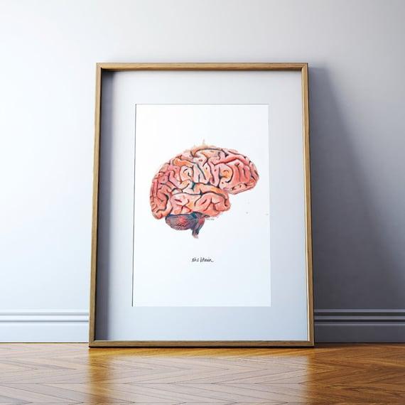 The Human Brain Sagittal View Watercolor Print Anatomical Etsy