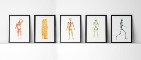 Körper-Systeme 5 Stück Aquarell Druck Set Anatomie Art Set