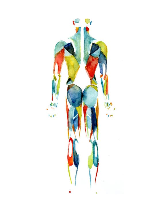 Körper-Systeme 3-Piece Aquarell Druck Set Anatomie Kunst | Etsy