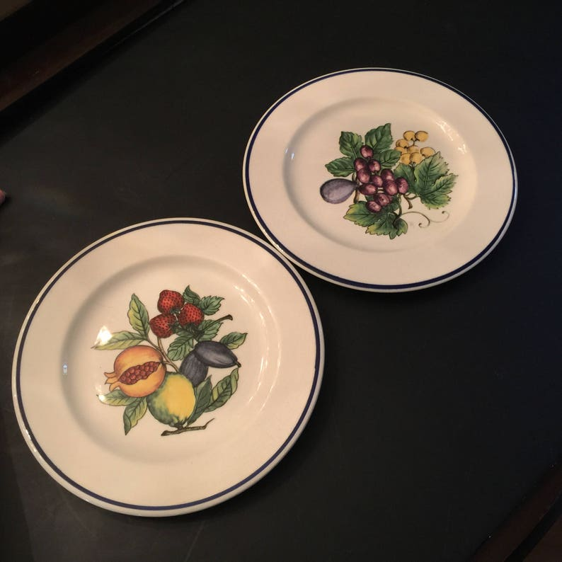 Fruit Themed Decorative Wall Plates Set Of 2 White With Navy Etsy