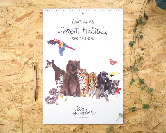 Illustrated 2020 Calendar // A3 Animals of Forest Habitats Calendar // Illustrated Animal Calendar