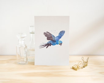 Hyacinth Macaw Illustrated Watercolour A5 Print // Colourful Macaw Series // Exotic Parrot Painting